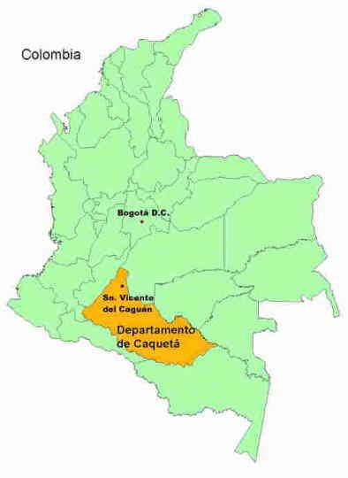 ¿Que es la FARC?